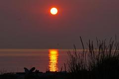 Dorothy Singleton - DSC06436 Iona Sunset1