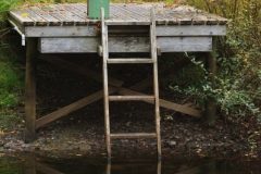 Brian Cooombs - Dock at Pond on Salt Spring Island