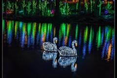 Klaas Focker - Lafarge Lake #4