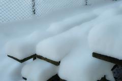 gerry boretta - snow gerry  (3)