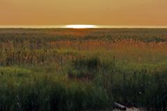 Paul Rennie - Rennie -Sunset 1 small