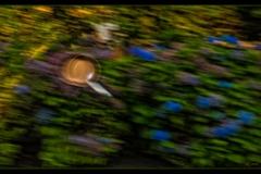 Klaas Focker - Klaas Panning#1