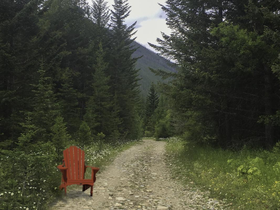 Chuck-Vaugeois-2-Red-Chair-in-the-woods