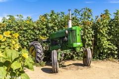Chuck-Vaugeois-001-Tractors
