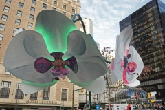 Dorothy-dorothy_2_ShNTell-DSC09162-Orchidelirium-at-Lumiere1