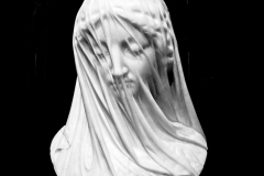 Mary-Zwick-Veiled-Virgin