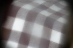 Dorothy-dorothy_2_Picnic-IMG_7450-Reflections1