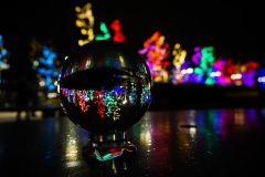 Dorothy-dorothy_2_Festive-Lights-DSC00646-f3.5-115s