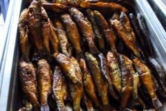 Dorothy-IMG_5990-Smoked-Fish1
