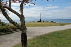 Cherry Tree and Fishermen Monument at Garry Point
