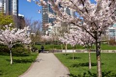 gerry-boretta-spring-views-2