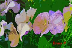 Brian-G-Phillips-Artisanal-attempt-1080