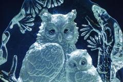 Dorothy-DSC03886-Glass1-Owl