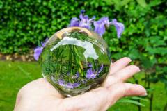 Dorothy-DSC04103-Glass-Iris1