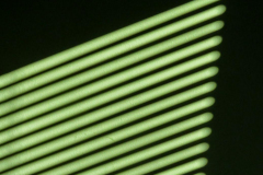 Dorothy-IMG_9391-Shadows1