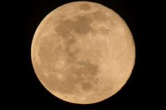 Brenda-Luciuk-Super-Moon-Shoot-with-Shidan