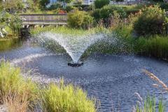 Angela-Burnett-2.-Summer-Fountain-354