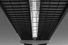 Brian-G-Phillips-Bridge-3