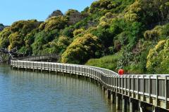 paul-gregory-Paul-Gregory-Bridge-1