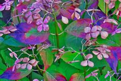 Brian-G-Phillips-4-Colours-copy-1080