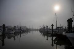 Paul-Rennie-Autumn-Fog-in-Steveston4