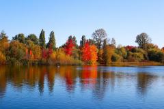 Hendy-Colorful-lake-side