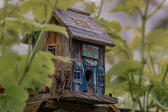 Chuck-Vaugeois-London-Haritage-Farm_03