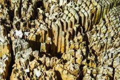 Dorothy Singleton - dorothy_3_Macro (IMG_1962) Bryce Canyon1...