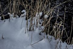 gerry boretta - snow gerry  (1)
