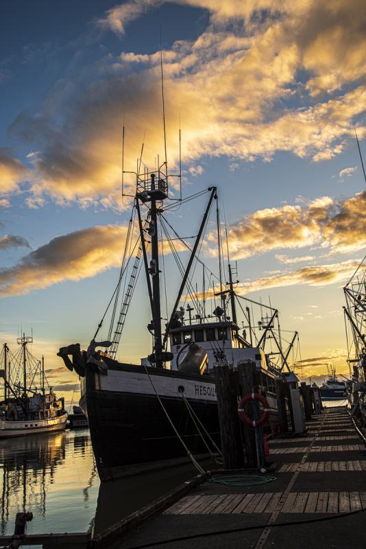 Chuck-Vaugeois-006-Steveston-Fisherman's-Wharf